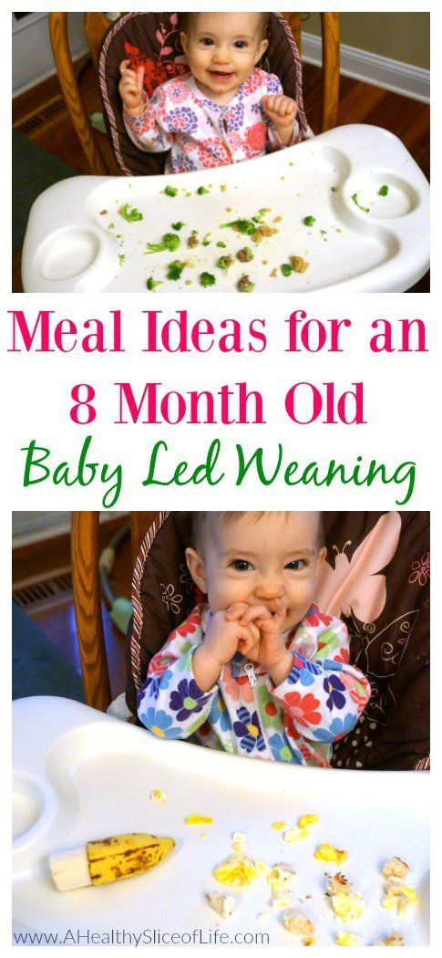 Baby Led Weaning Meal Ideas 8 Months Old Baby Snacks Baby Led