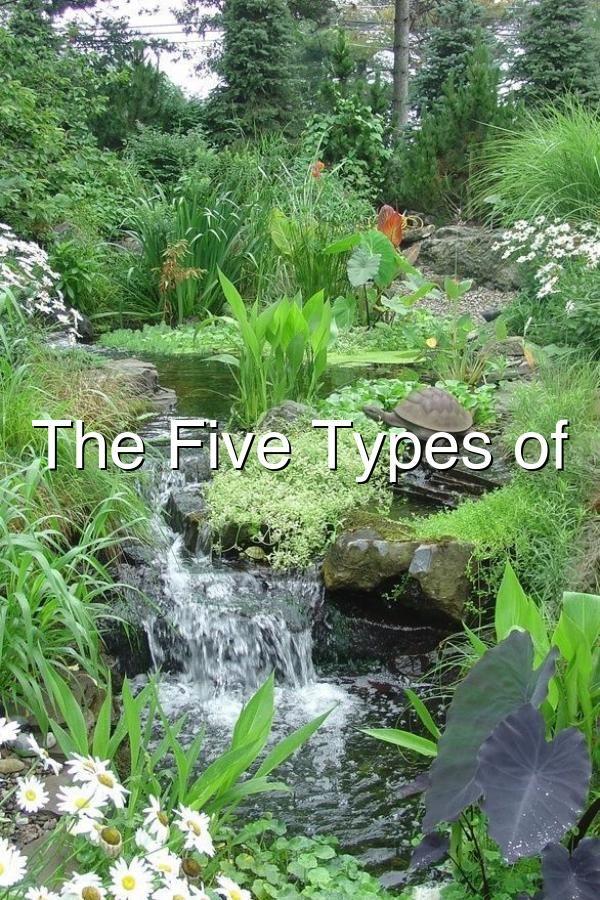 water garden streams  visit homegardenarchitecture blogspot com watergardens gardenpond garden pond cleanses