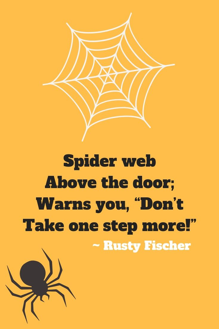 spider web a halloween poem | halloweeny screamy! halloween poems
