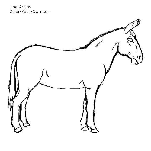 Mule Line Art Line Art Black And White Lines Mules