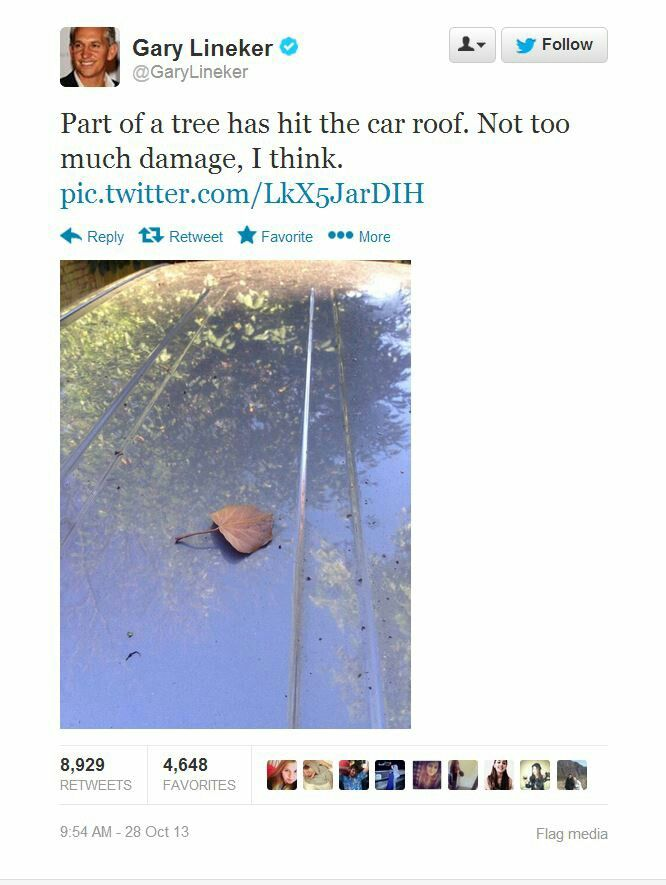 Part Of A Tree Hit The Car Roof Dad Joke At Its Finest Best Dad Jokes Dad Jokes Dad Jokes Funny