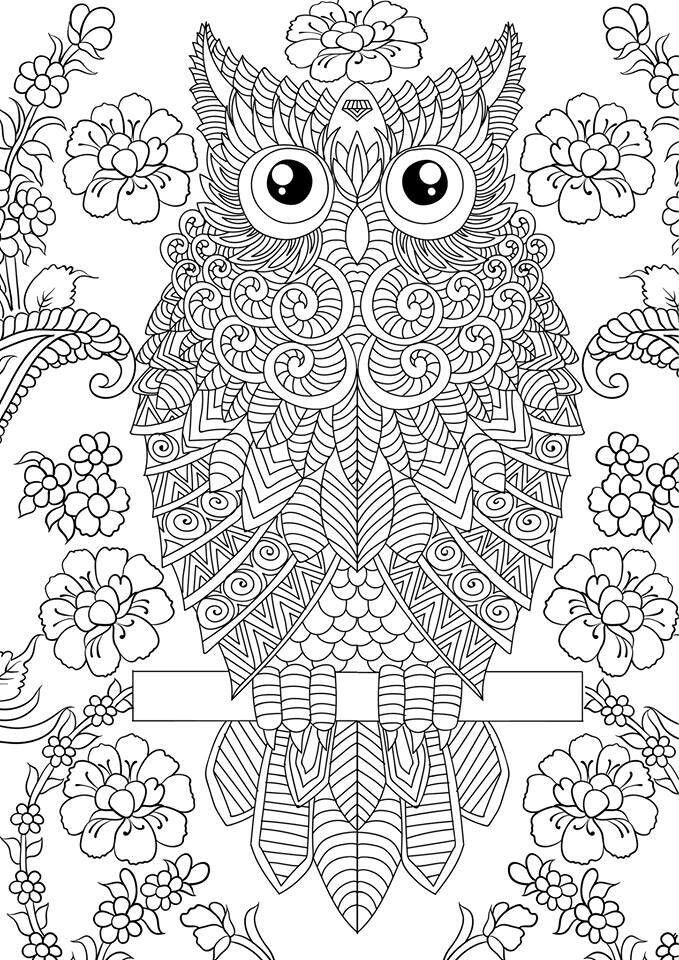 Pin by Ann Furnas on Design Patterns Owl coloring pages