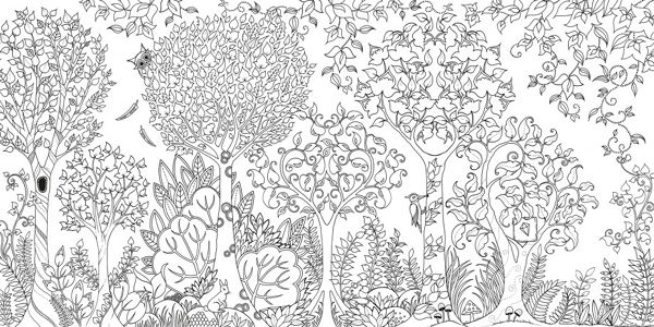 Enchanted Forest An Inky Quest Colouring Book Johanna Basford