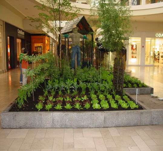 Home Design Ideas For Seniors: Indoor Garden. Nursing Homes And School Should Be Doing