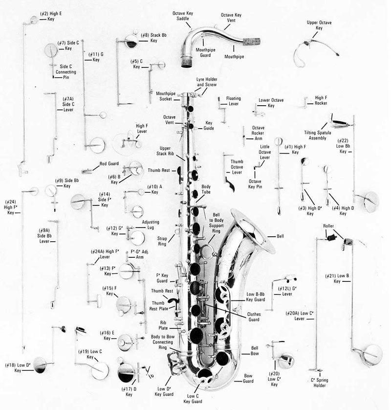 Sax Key Diagram Wiring Diagrams Click - 800x838