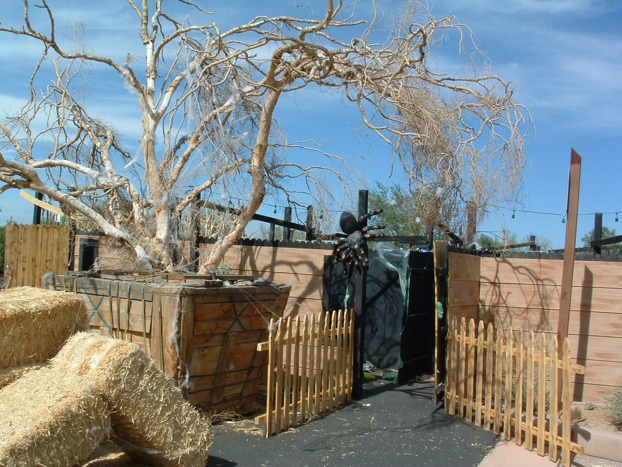 halloween decorations Halloween Party Maze Decor Halloween Ideas - Pinterest Halloween Decorations