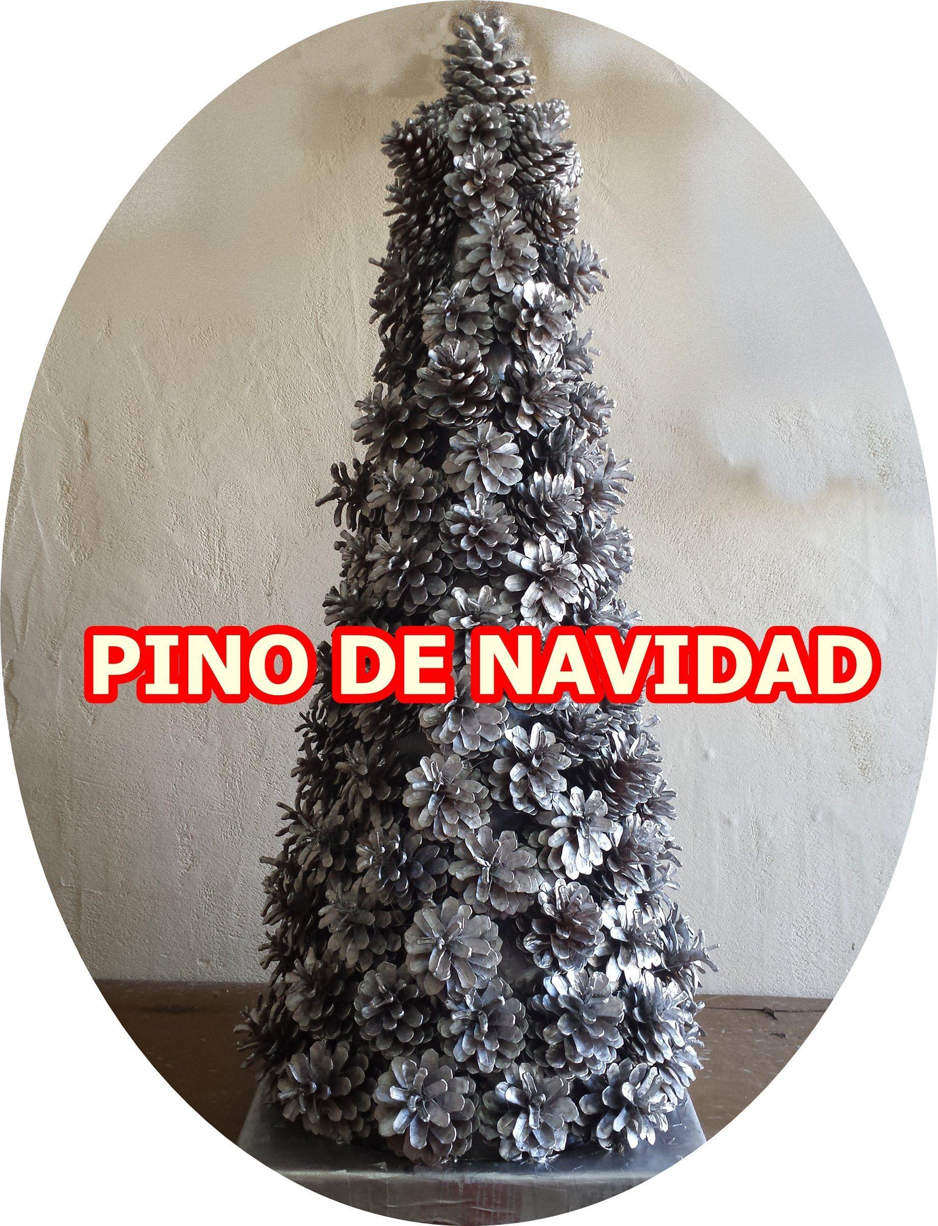 Semillas De Pino Navideno
