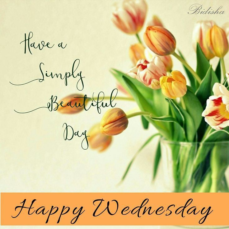 Happy Wednesday Greetings Weekday Quotes Wednesday Morning