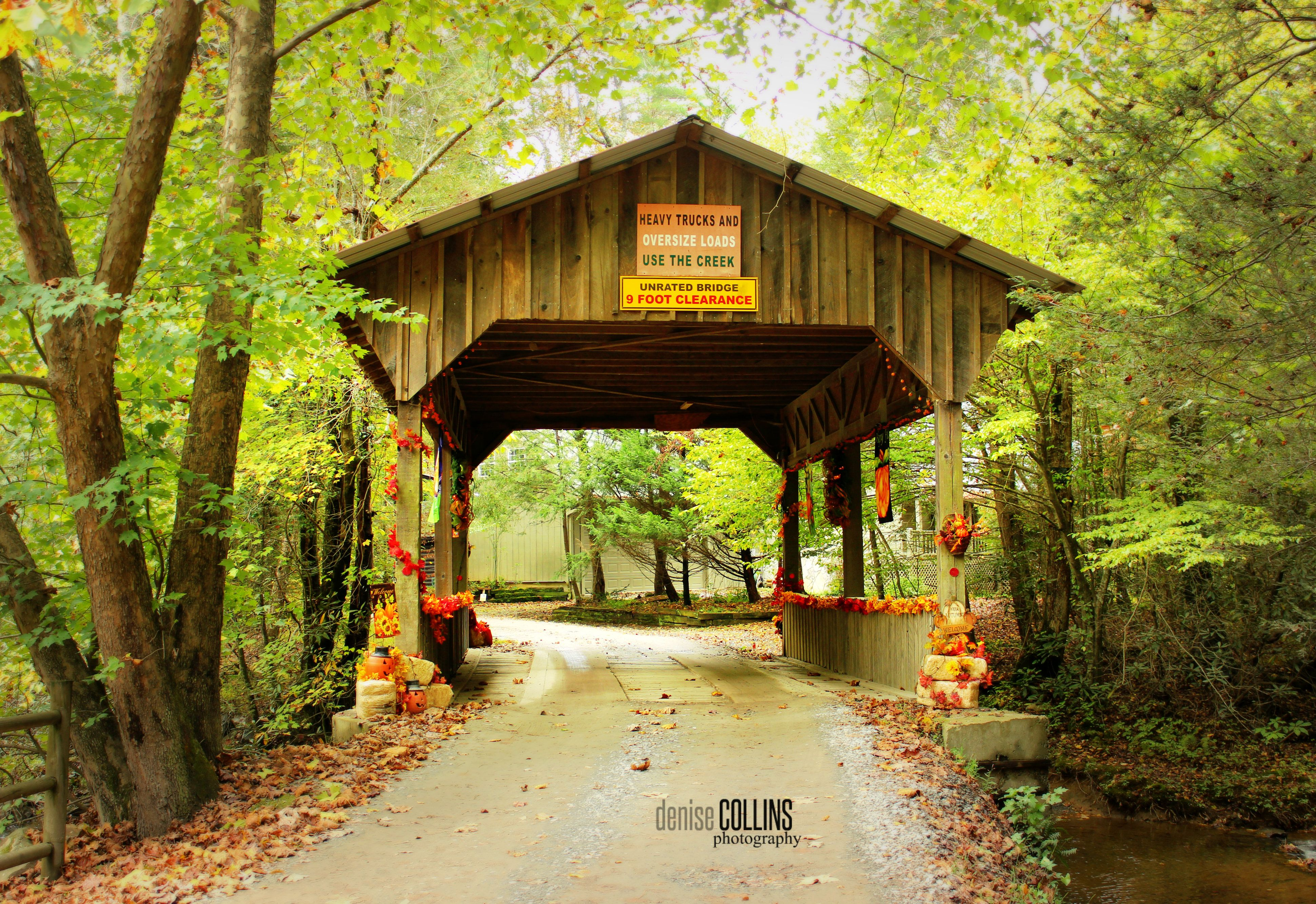 unrestricted ga cabins listings ellijay for previous view mountain spur land south in with piney next creek