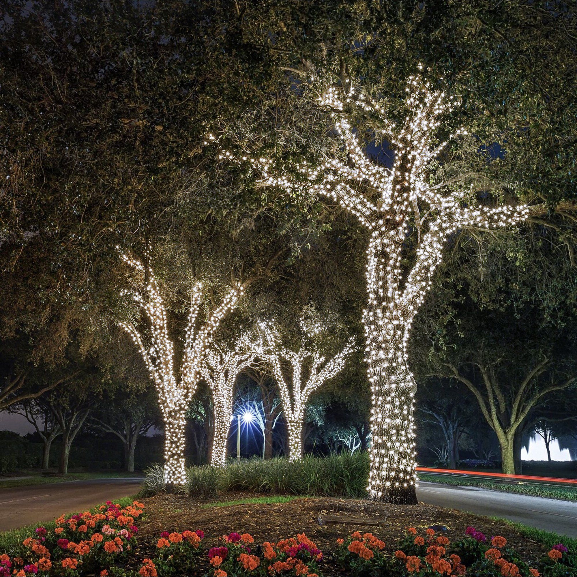 Fairy Lights White Light Walmart Com Outdoor Tree Lighting Christmas House Lights Exterior Christmas Lights