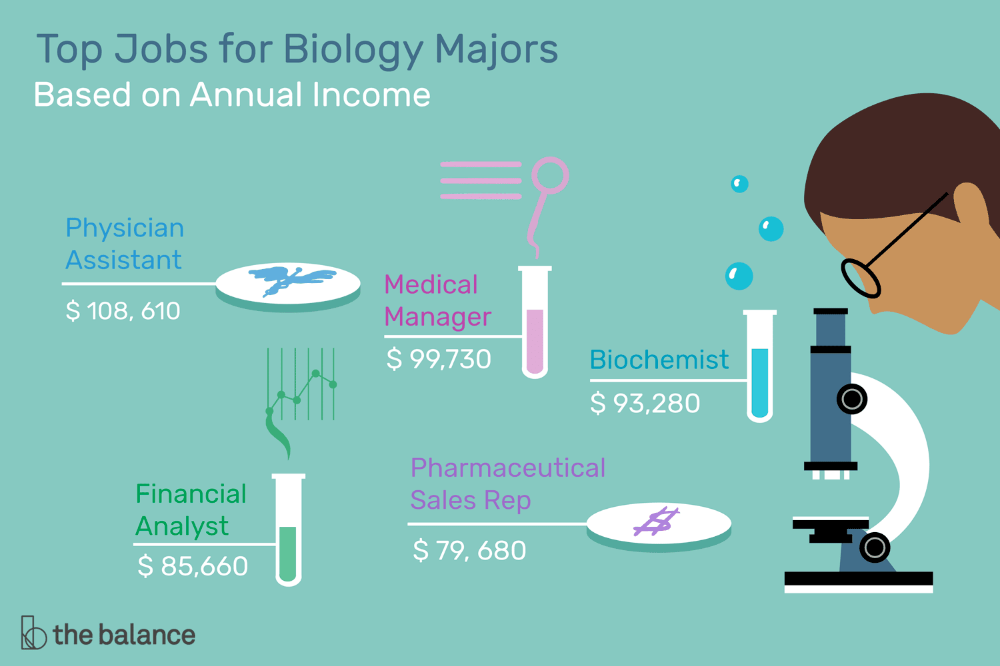 What You Can Do With a Biology Degree Biology major