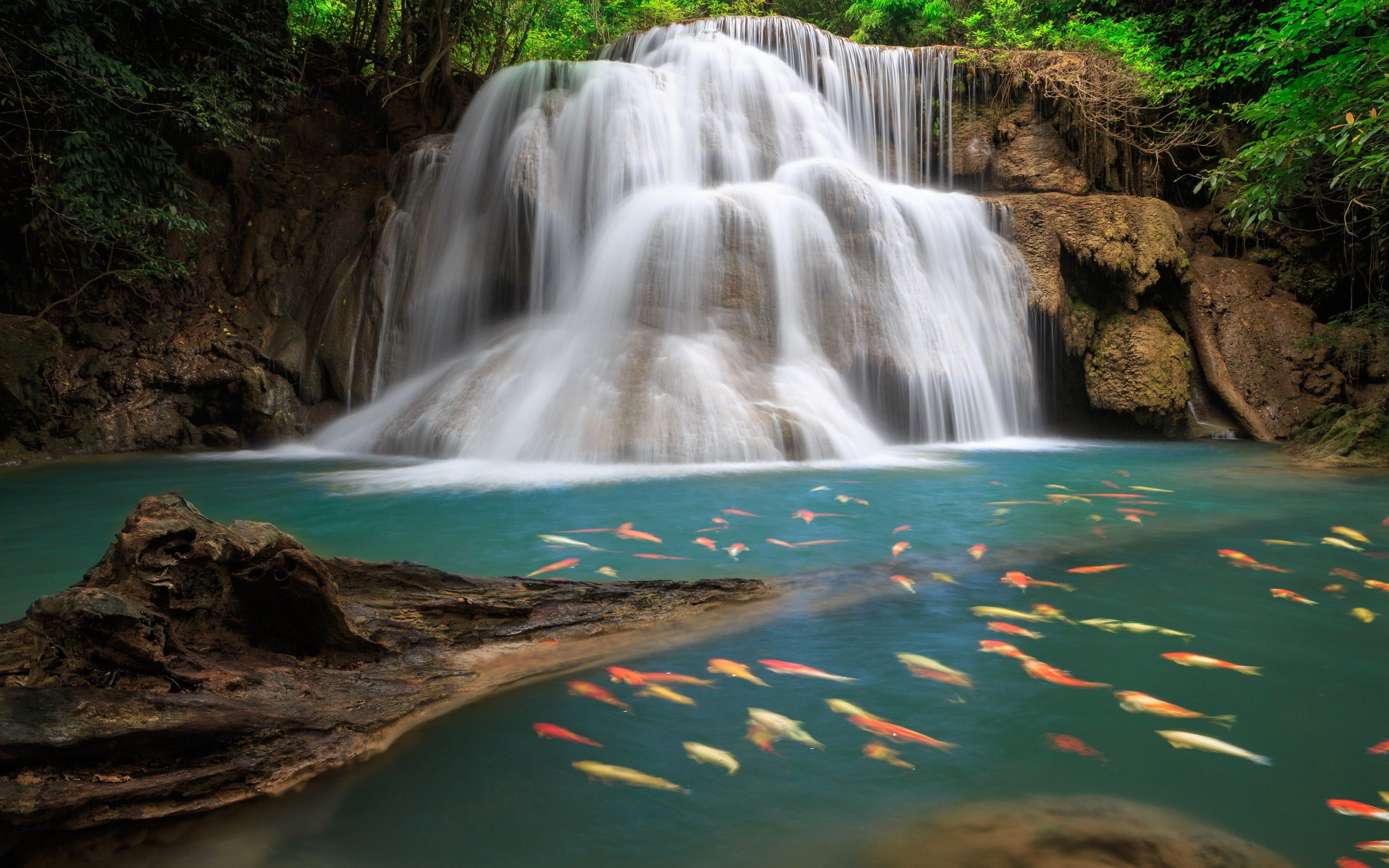 Tropical Waterfall High Resolution Wallpaper High Quality