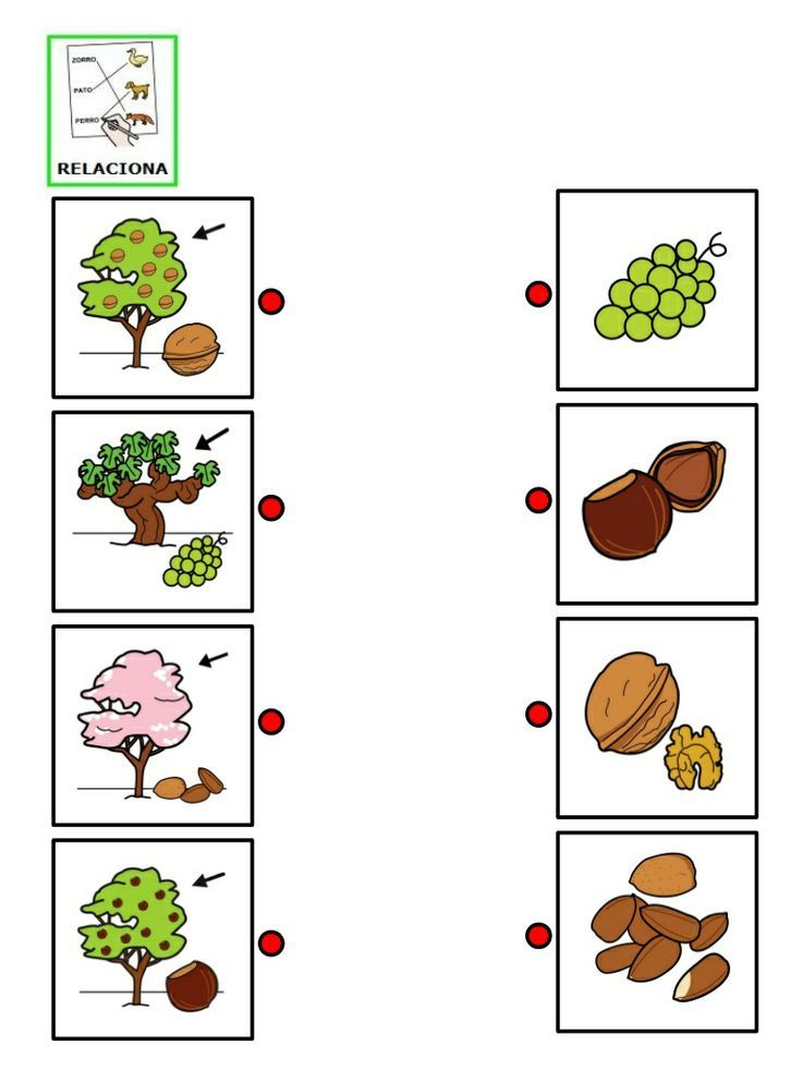 furit tree matching worksheet | SLP Materials and Ideas ...