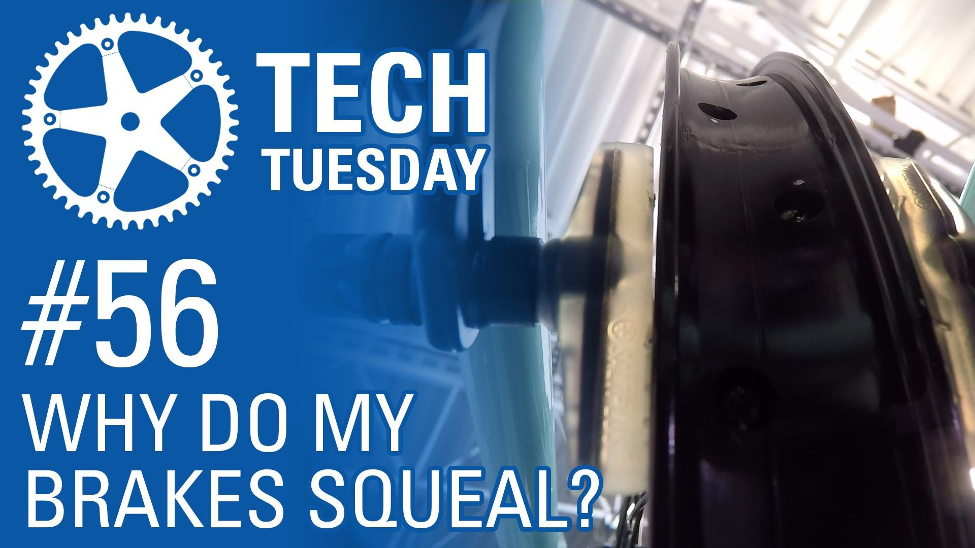 Why Do My Brakes Squeal? Tech Tuesday 56 (con imágenes)