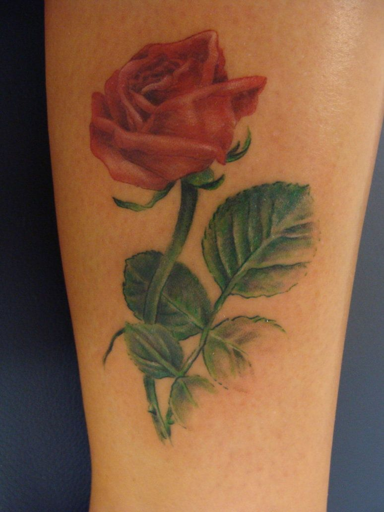 Cute tattoo ideas for girls rose flower tattoo  tattoo designs by rosemary pickett  tattoos