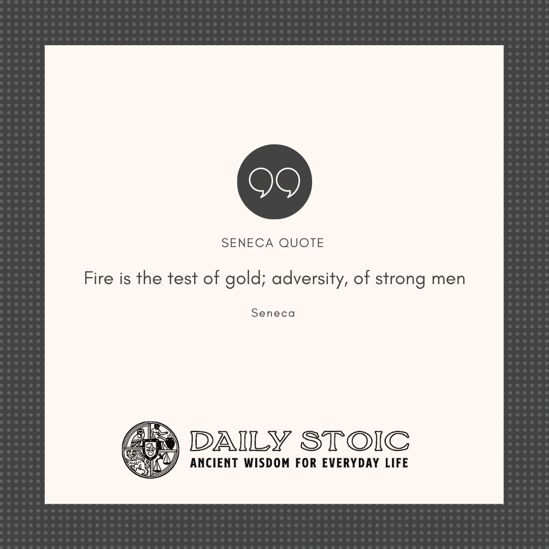 20 Stoic Quotes On Handling Adversity Stoic Quotes Stoicism Quotes Adversity Quotes