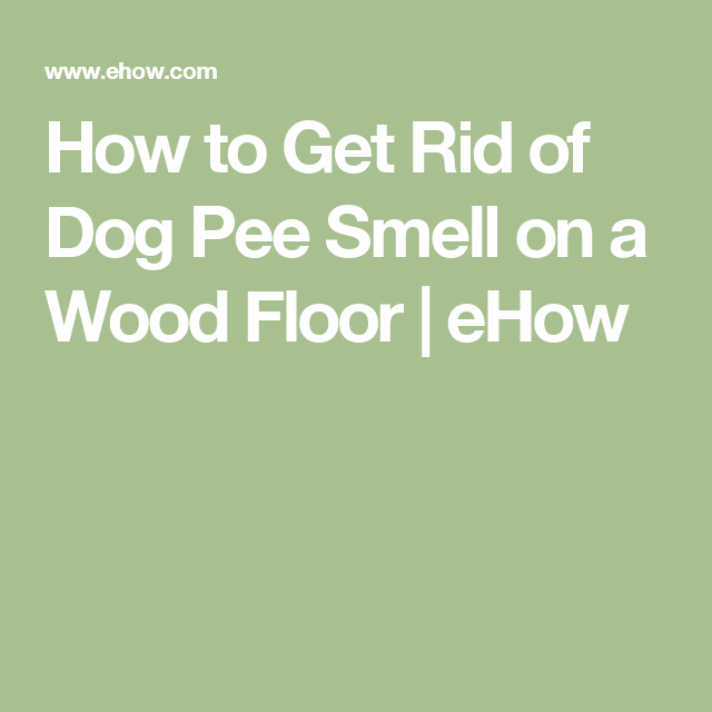 How To Get Rid Of Dog Pee Smell On A Wood Floor With Images Dog Pee Smell