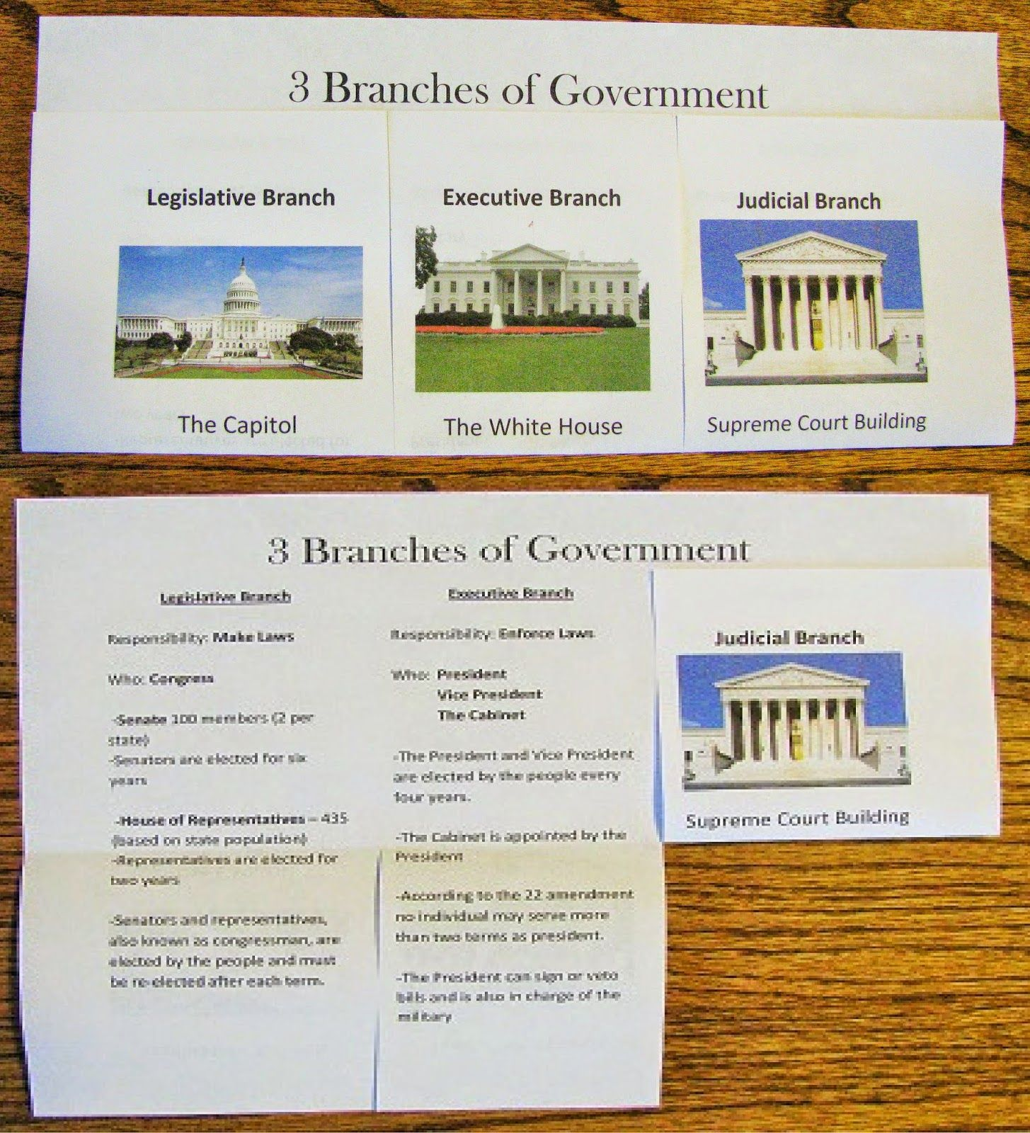 3 Branches Of Government Study Guide Foldable Graphic Organizer This Hands On Activity Is A Fun