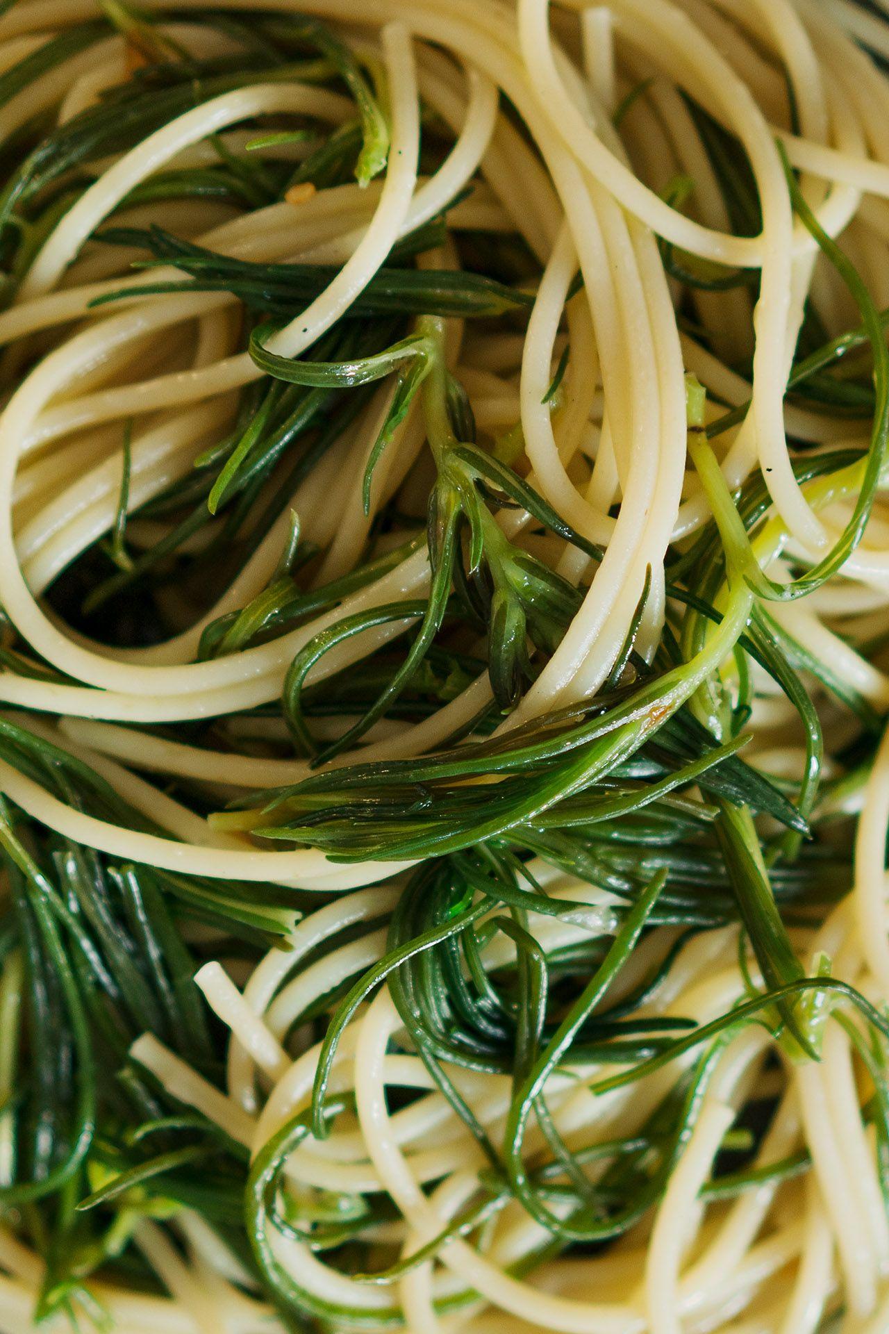 Berliner Kuche Spaghetti Mit Monchsbart Spaghetti Con Agretti Pasta With Monk S Beard Aglio E Olio In 2020 Berliner Kuche Spaghetti Schokoladentarte