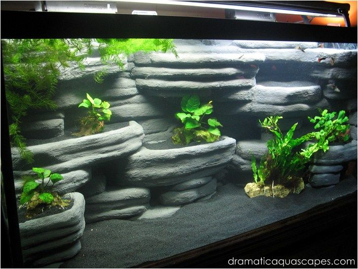 Diy Aquarium Background Rock Ledges Aquarium Diy