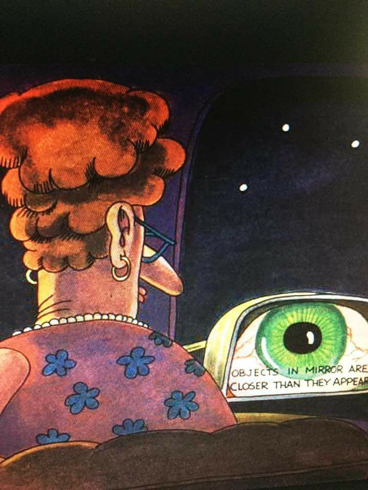 Objects in the mirror are closer than they appear. - Far Side | Animated  cartoons, Funny cartoons, Cartoon