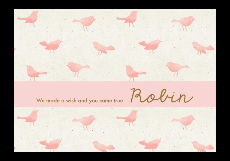 Geboortekaartje Robin - Kaartjes en Co