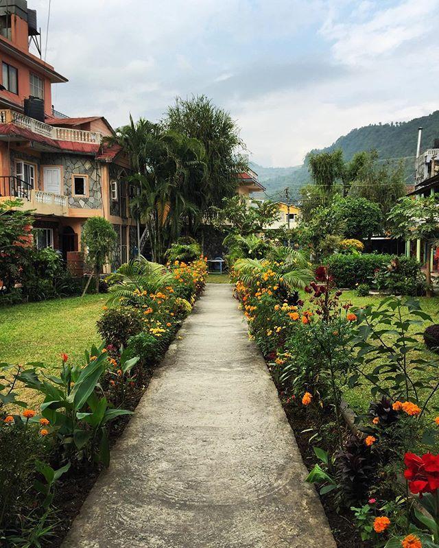 Springtime in Pokhara ain't half bad! 🌺🌼 #ddRoams #didianddhai #pokhara #nepal #asia #travel #spring #colors #flowers #backyard #hotel #heaven #instanepal #instatravel #lovenepal #dktm #nepalnow