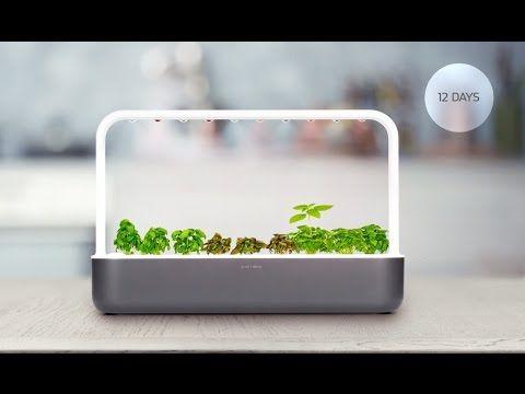 Smart Garden   Indoor Garden » Gadget Flow | Design | Pinterest | Garden  Gadgets And Gardens