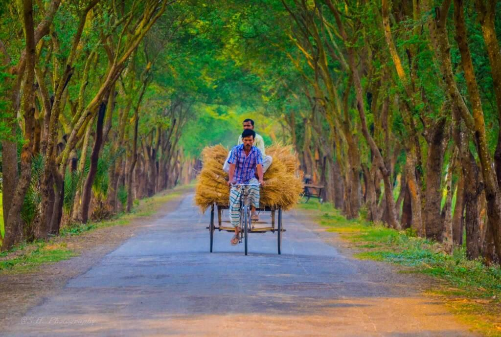 Beautiful Bangladesh Bangladesh ���াংলাদেশ Pinterest
