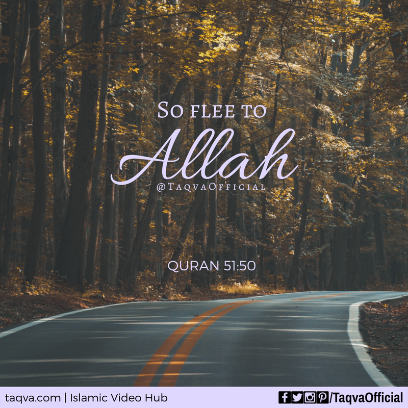 """""""So #flee to #Allah . Indeed, I am to you from Him a clear warner."""" #Quran 51:50 . #islam #muslim #turntoallah #turntogod #godfirst #muslims #muslimah #islamicreminder #islamicquote #islamicquotes #tawakkul #tawakkal #taqva"""