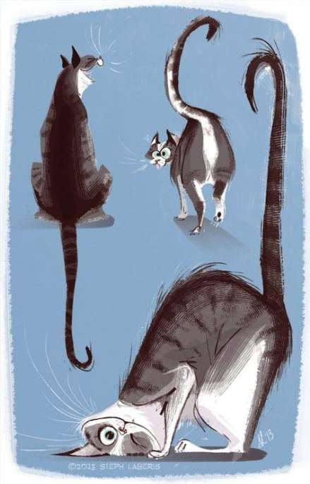 Cats illustration drawing funny 44 ideas