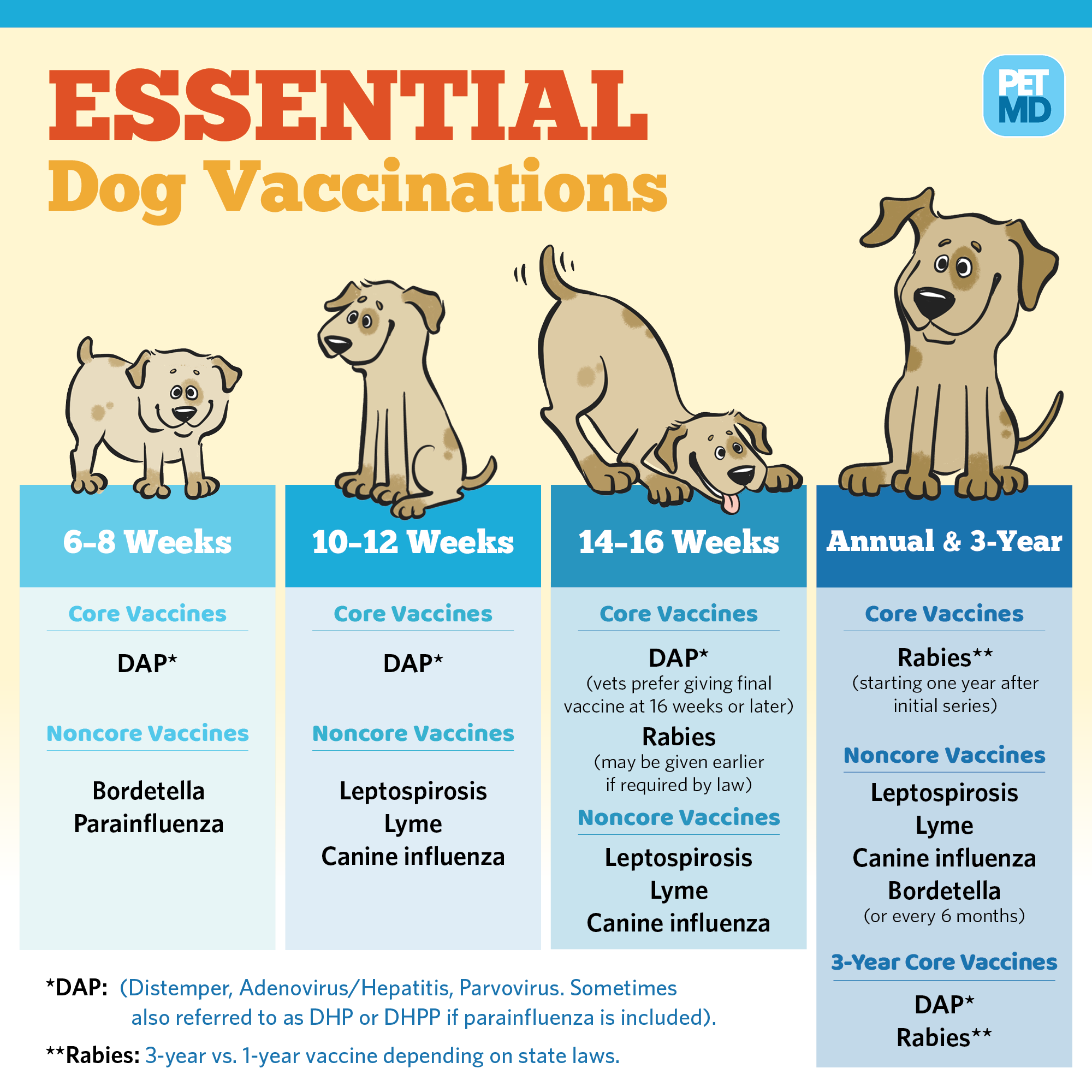 Pin On Pet Vaccination