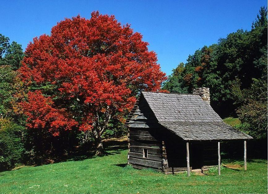 Jessie Brown Cabin Near Blue Ridge Parkway North