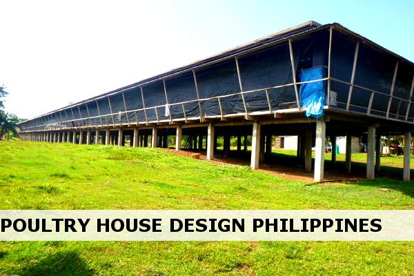 Chicken House Design Philippines With Simple Chicken Coop Plans