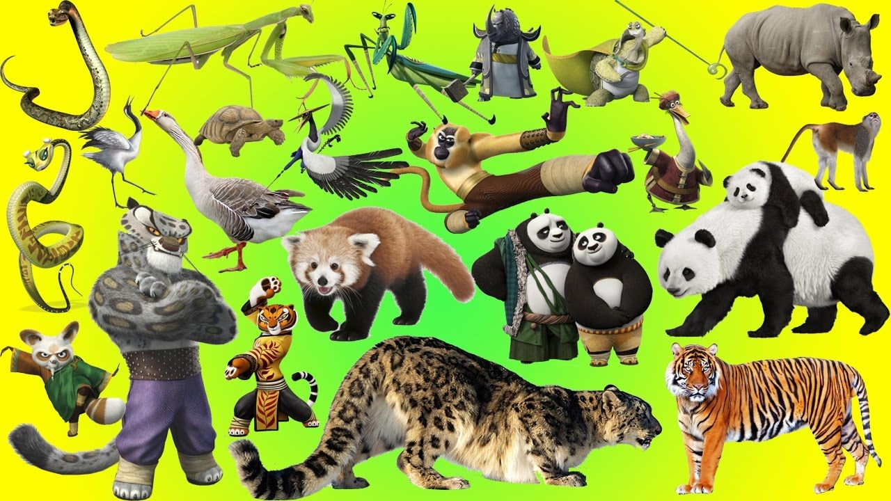 Kung fu Panda Wild Animals Names and Sounds Animals