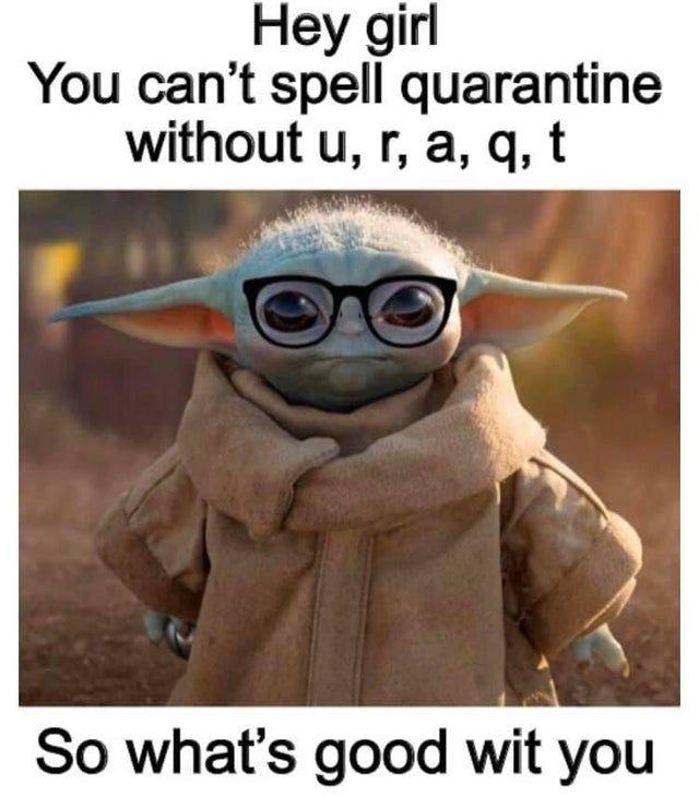Pin By Kari Ann On Alexa In 2020 Yoda Meme Stupid Funny Memes