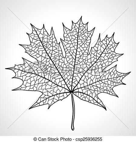Vector Leaf Of A Maple Nature Symbol Monochrome Vector Stock Illustration Royalty Free Illustrations Stoc Nature Symbols Maple Leaf Drawing Leaf Drawing
