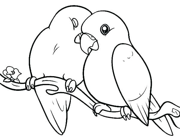 Pin By Pewe Pere On Krojka Love Coloring Pages Bird Coloring Pages Love Birds Drawing