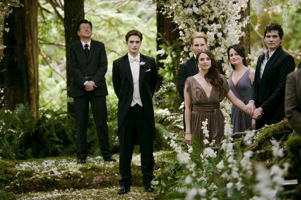Robert Pattinson Peter Facinelli Elizabeth Reaser Mia Maestro Christian Camargo Angelo Renai Break Twilight Wedding Twilight Saga Twilight Breaking Dawn