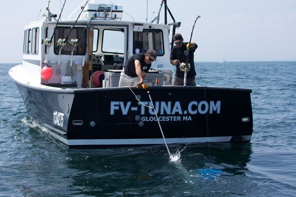 Wicked tuna splashes back to tv star gloucester captains for Tuna fishing boats for sale