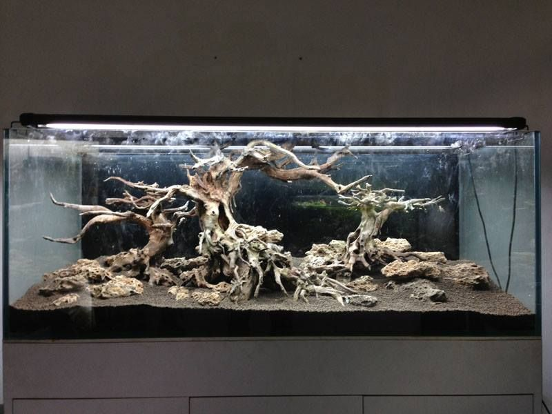 Hardscape By Green Chapter From Vietnam Tank Size 150 X 60