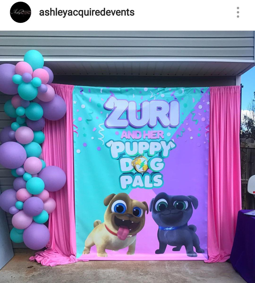Puppy Dog Pals Custom Background Backdrop Puppy Birthday Parties Puppy Party Decorations Girls Birthday Party Themes