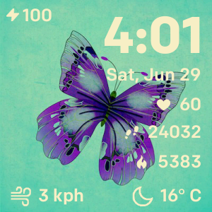 Pin on Fitbit Clock faces