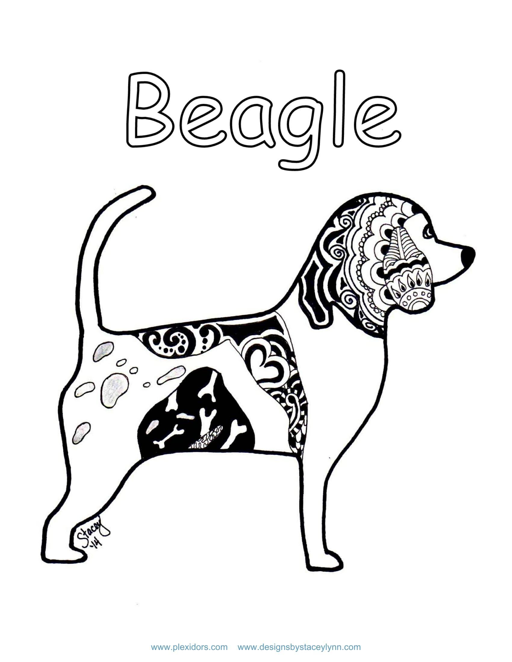 Beagle Coloring Page Plexidor Activity Book Pg 2 Pet Doors