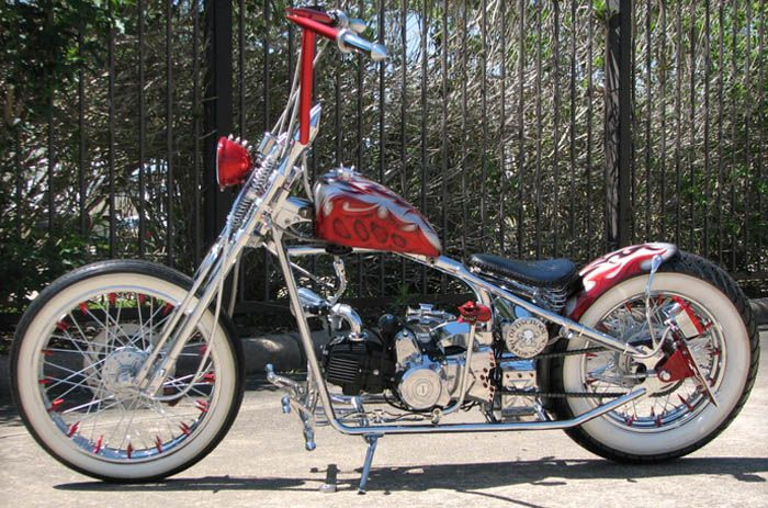 Ordinaire Really Cool Kicker Custom Mini Chopper.