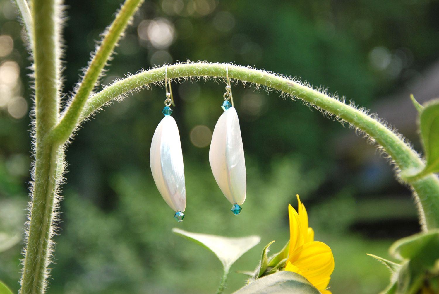 Sterling Silver, Shell and Swarovski Crystal Earrings. Lightweight shell earrings, statement earrings, teal swarovski earrings, white shells - pinned by pin4etsy.com