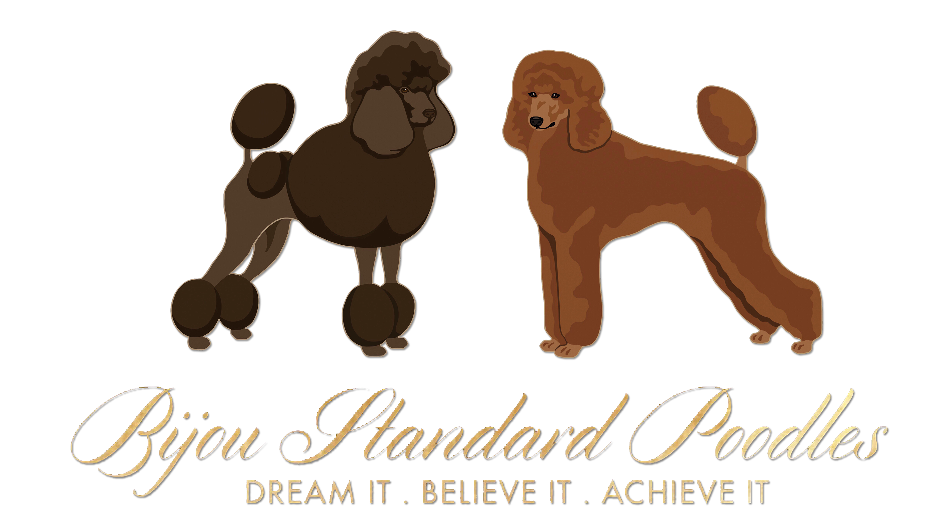 Hershey Thumbnail Poodles Poodle Grooming Poodle Puppies For Sale Poodle