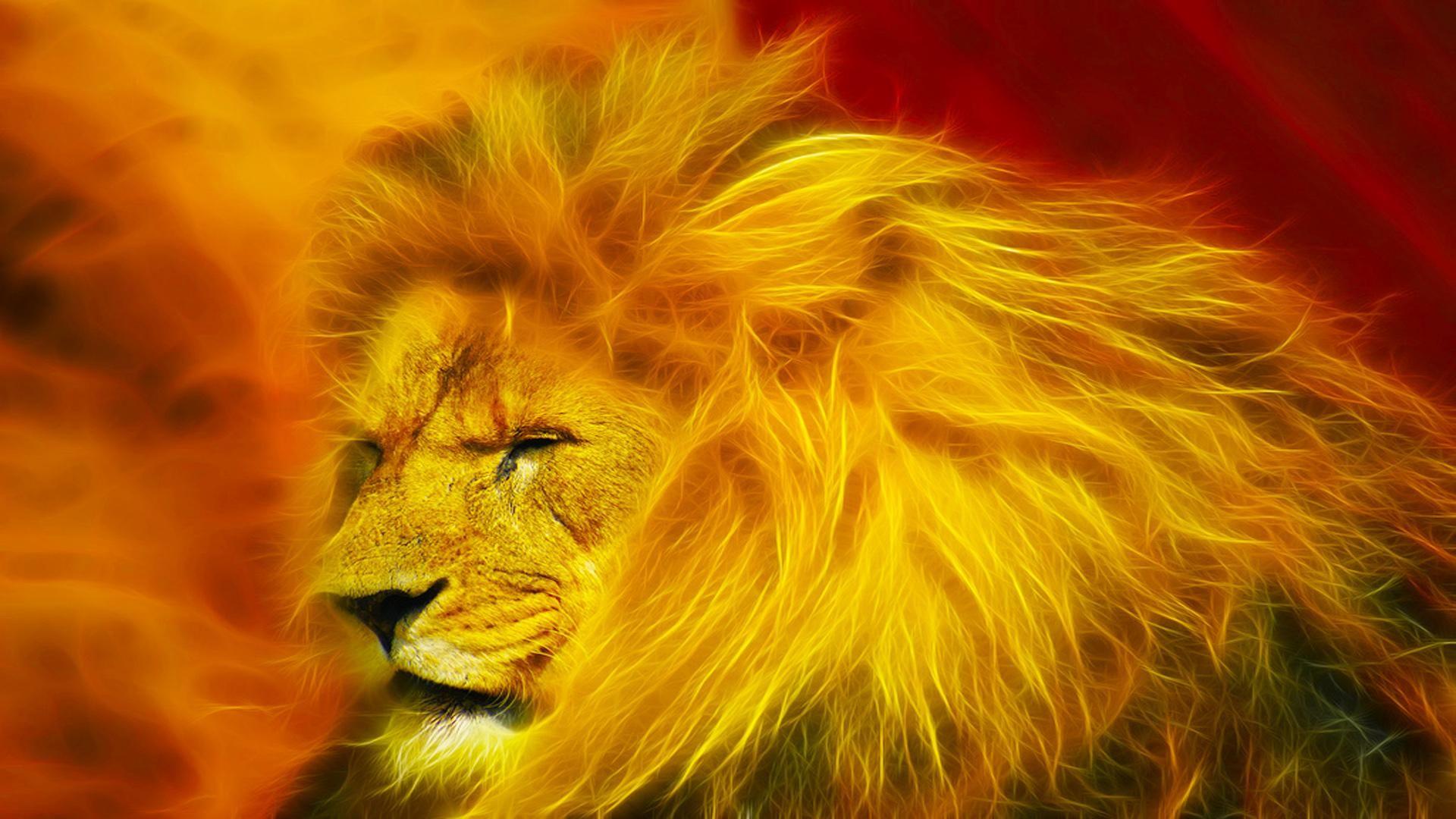 фото высокого качества львы на фон телефона вечными спутниками