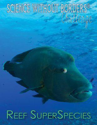 Persuasive essay on marine biology argumetative essay Direct Textbook News