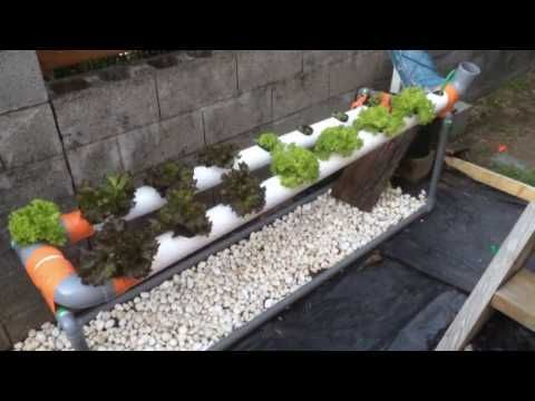 Diy Jardin Aromatique En Gouttieres Youtube Jardin